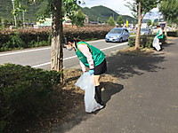 Img_0531_3